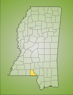 walthall county Welcome to the walthall county, mississippi online record search this search engine will return chancery court in amite county the information is uploaded to this server frequently but may.